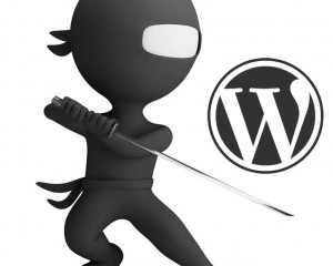 Securing WordPress Initial Steps